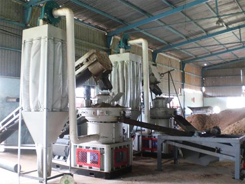 生物质ranliao颗粒机对生产厂家技术创新yao求越来越高
